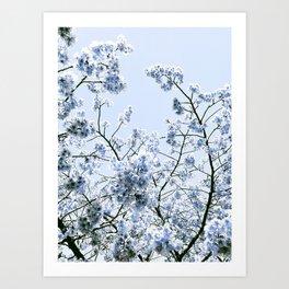 Spring Baby Blue Flowers Art Print