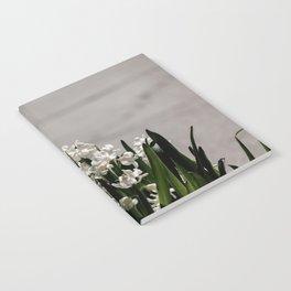 Hyacinth background Notebook