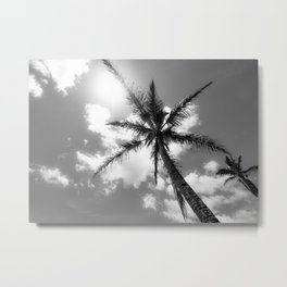 Tropical Palm Trees Black and White Metal Print