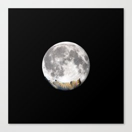 Sleeping cat with the Moon Canvas Print
