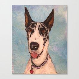 Harlequin Great Dane Dog Painting Canvas Print