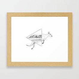 Lucky Bay Kangaroo Framed Art Print