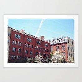 Brooklyn Architecture  Art Print
