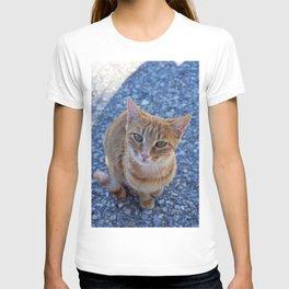 give me a little love T-shirt