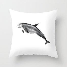 Risso's Dolphin Throw Pillow