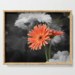 red gerbera daisy in the vase Serving Tray