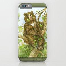 Bear on a Tree Slim Case iPhone 6s