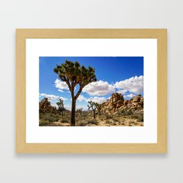 Cool Breeze In Joshua Tree Framed Art Print