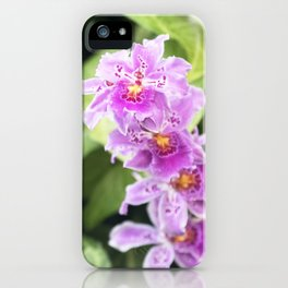 Longwood Gardens Orchid Extravaganza 61 iPhone Case