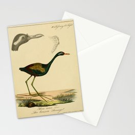 parra aenea1 Stationery Cards