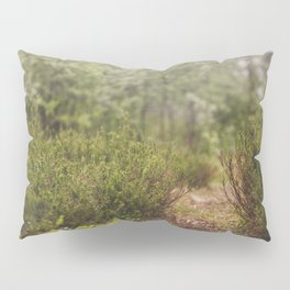 The Blueberry Trail Pillow Sham