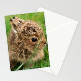 Leveret In The Grass Stationery Cards