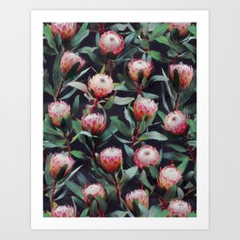 Evening Proteas - Pink on Charcoal Art Print