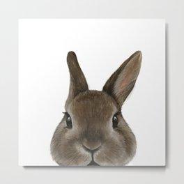 Netherland Dwarf rabbit illustration original painting print Metal Print