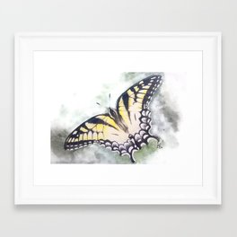 Butterfly Framed Art Print