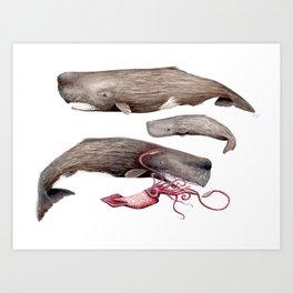 Sperm whale family Art Print