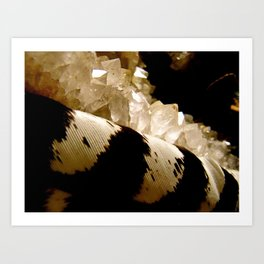Feather and Stone Art Print