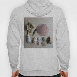 Little Beach Curiosity Collection 1 Hoody