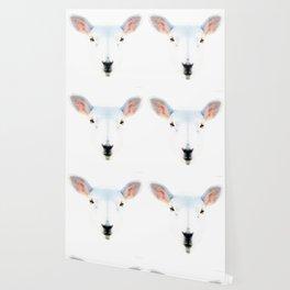The White Sheep By Sharon Cummings Wallpaper