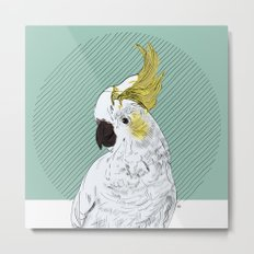 FEATHER FEST - COCKATOO Metal Print