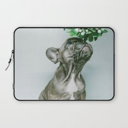 Christmas Pup Under Mistletoe (Color) Laptop Sleeve