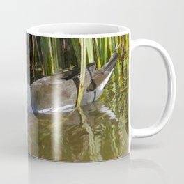 Moorhen with chick Coffee Mug