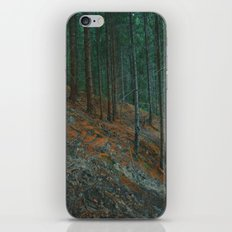 into the woods 02 iPhone & iPod Skin