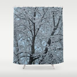 Big Tree In Snow and Blue Sky Shower Curtain