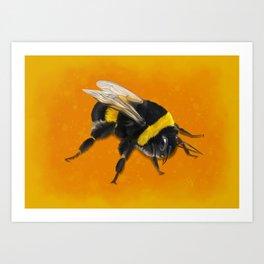 Fuzzy Bumblebee Art Print