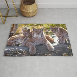 Graceful Wonderful Female Lynx Mother With Two Super Cute Kitten Close Up Ultra HD Rug