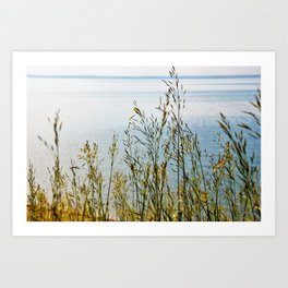 Лето Art Print