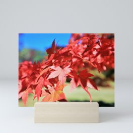 Japanese Maple Leaves 2 Mini Art Print