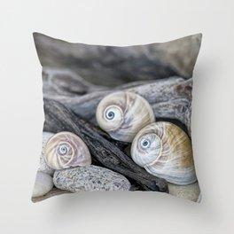 Shark's eye shells and driftwood Throw Pillow