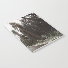 Redwood Forest Adventure II - Nature Photography Notebook