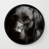 labrador Wall Clocks featuring Black Labrador   by Simon's Photography