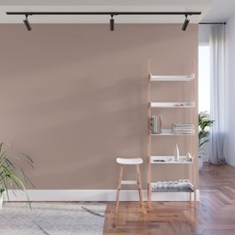 Dark Rose Pink Solid Color Pairs with Sherwin Williams Alive 2020 Forecast Colors Sandbank Pink Wall Mural