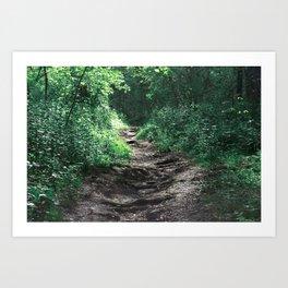 Woods III Art Print