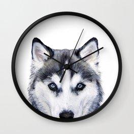 siberian husky2 Wall Clock
