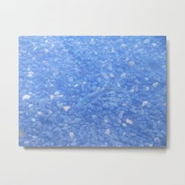 Blue Fish in Jordan River Metal Print