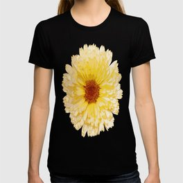 Beautiful Yellow Marigold Vector Isolated T-shirt