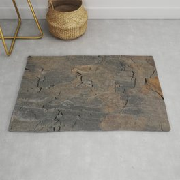 CLOSEUPS -  structure of shale plate  Rug