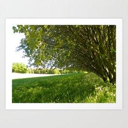 A Shady Spot Beneath the Trees  Art Print