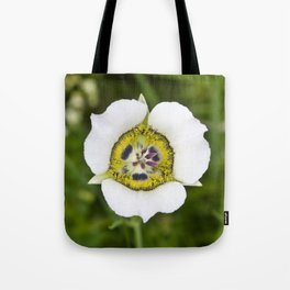 Gunnison's sego lily Tote Bag