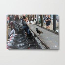 Candem bird Metal Print