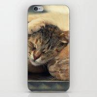 friendship iPhone & iPod Skins featuring Friendship by Ellen van Deelen