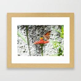 Butterfree Framed Art Print