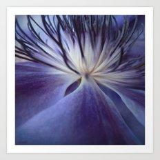 Clematis in Blue Mood Art Print