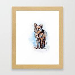 Snowy Fox Framed Art Print