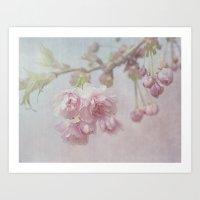 cherry Art Prints featuring Cherry by Anne Seltmann