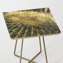 Golden Barrel Cactus Side Table